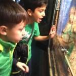 wilma_zoo_012