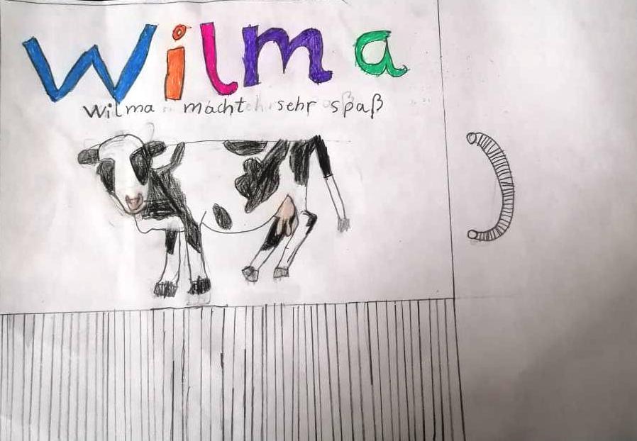 Wilma5